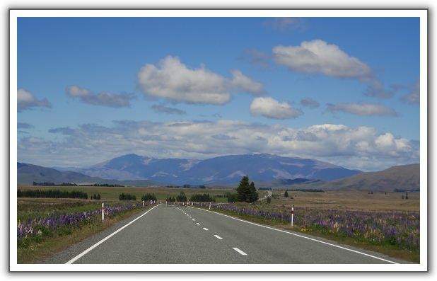 【2006。紐西蘭蜜月行】(06) 。Day 4-5。塔斯曼冰河(Tasman Glacier) 巡航。庫克山(Mt. Cook)步道健行