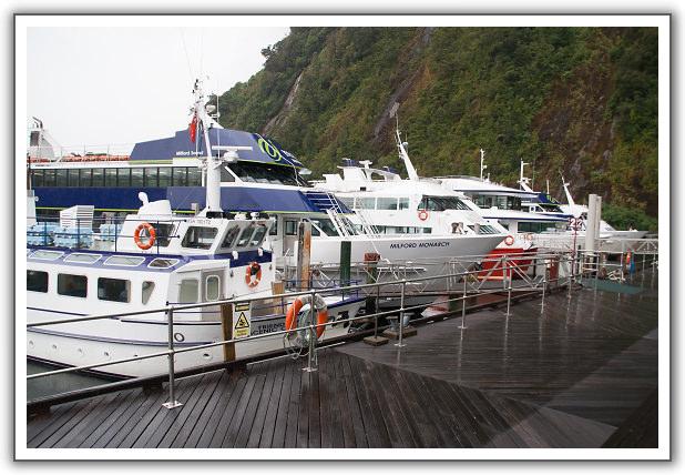 【2006‧紐西蘭蜜月行】(08) 。Day 7。米佛峽灣(Milford Sound) 巡航