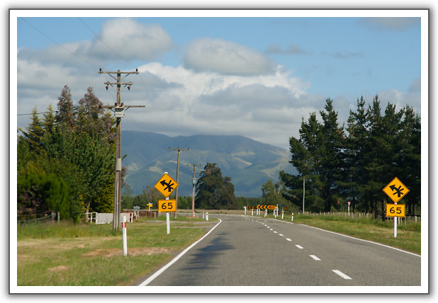 【2006‧紐西蘭蜜月行】(05) 。Day 3。蒂卡波湖 (Lake Tekapo)