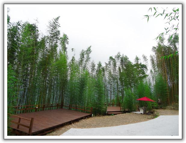 【瘋台灣】(74)。104年07月 新竹尖石。六號花園露營(第14露)