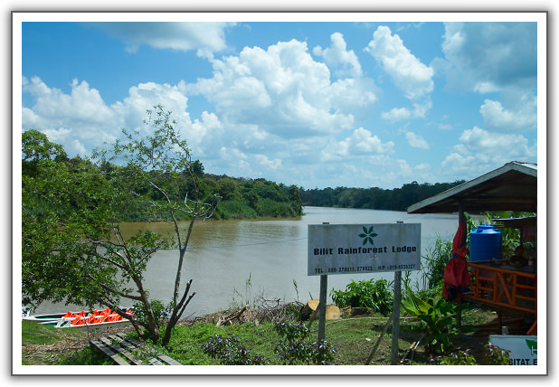 【2015‧沙巴山打根】(05)。Day 2。Bilit Rainforest Lodge、京那巴當岸河遊船探險 (第一回)