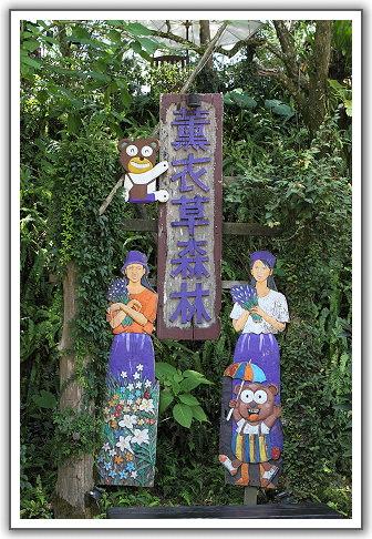 【瘋台灣】(49-1)102年10月。台中新社。薰衣草森林
