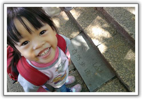 【瘋台灣】(63)。103年12月 台北。象山步道。台北101