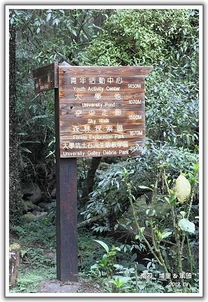 【瘋台灣】(38-2)102年01月 南投‧溪頭自然教育園區